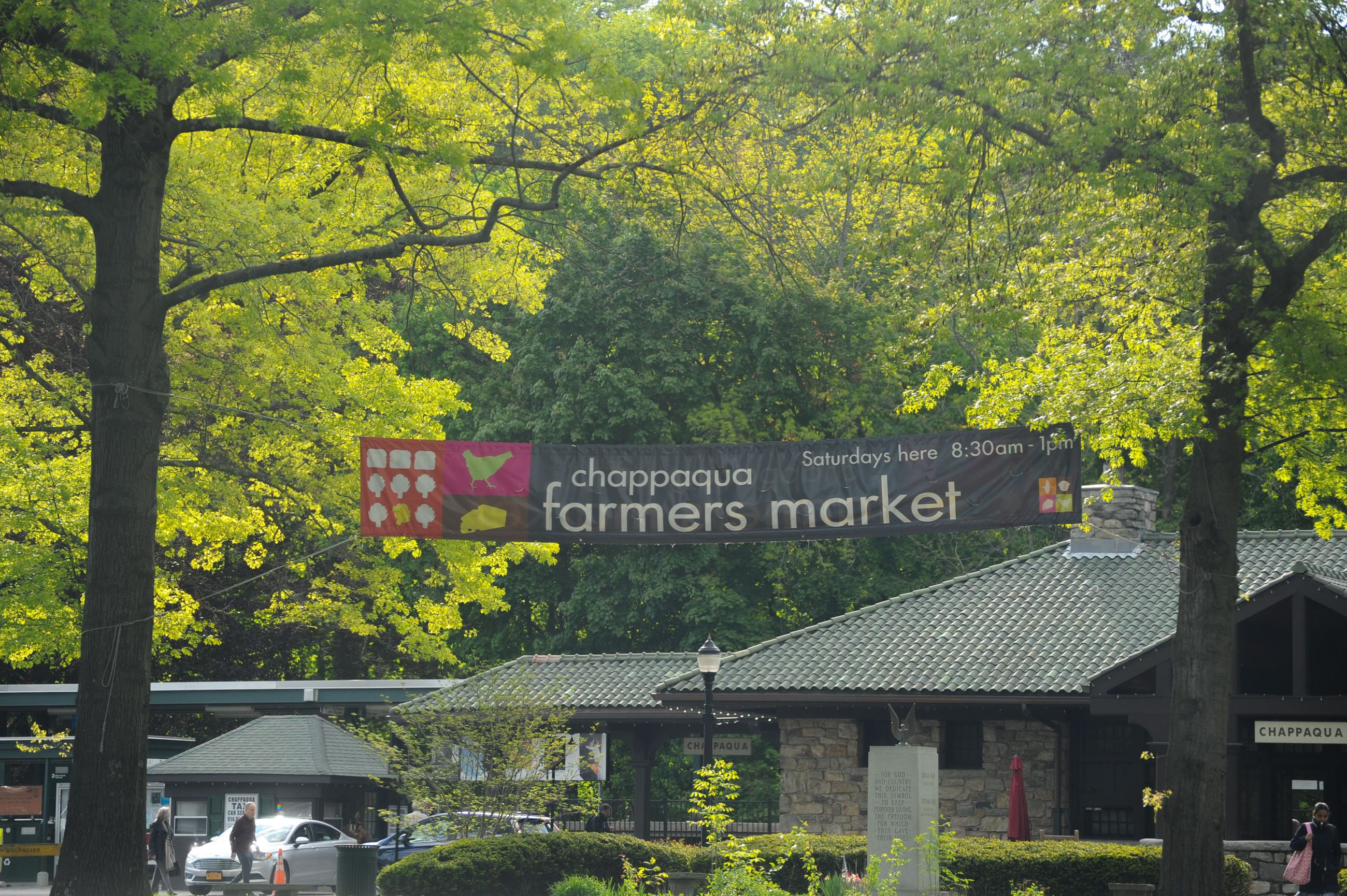 Farmers Market Banner Hanging between trees
